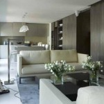 clever-space-distribution-modern-small-long-apartment8-500x331