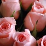 valentin-napi-otletek-1