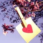 valentin-napi-otletek-13